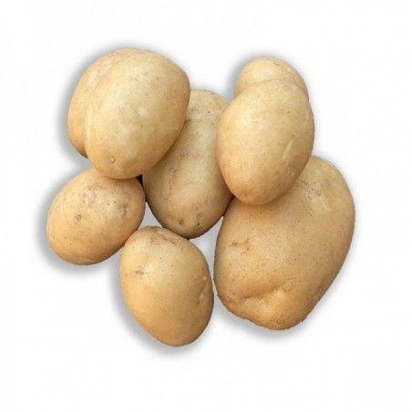 Pommes de terre Maiwen filet de 5kg