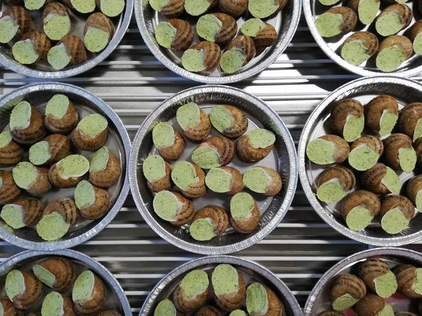 Assiette 12 escargots en coquille au beurre persillé