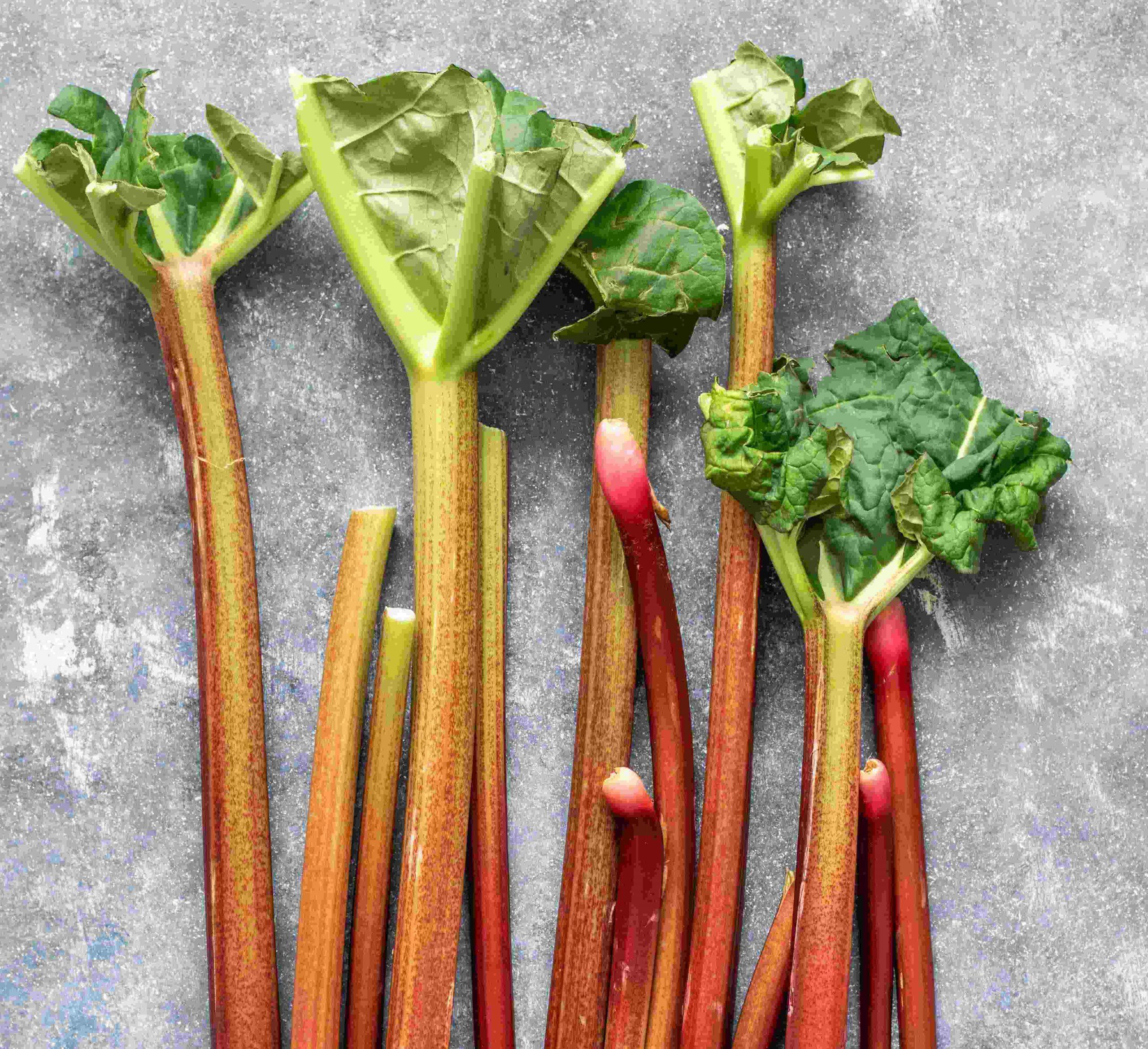 Comment réutiliser vos feuilles de rhubarbe